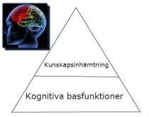kognitiva basfunktioner